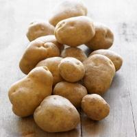 kentang - wiku hpa